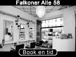 Falkoneralle58